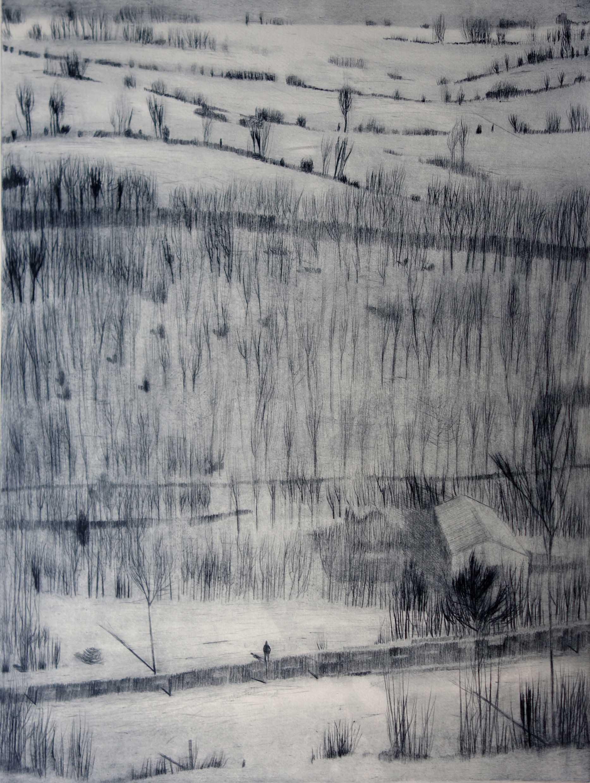 Katja Lang, Erzgebirge, 2019, Kaltnadelradierung, 67 x 50 cm